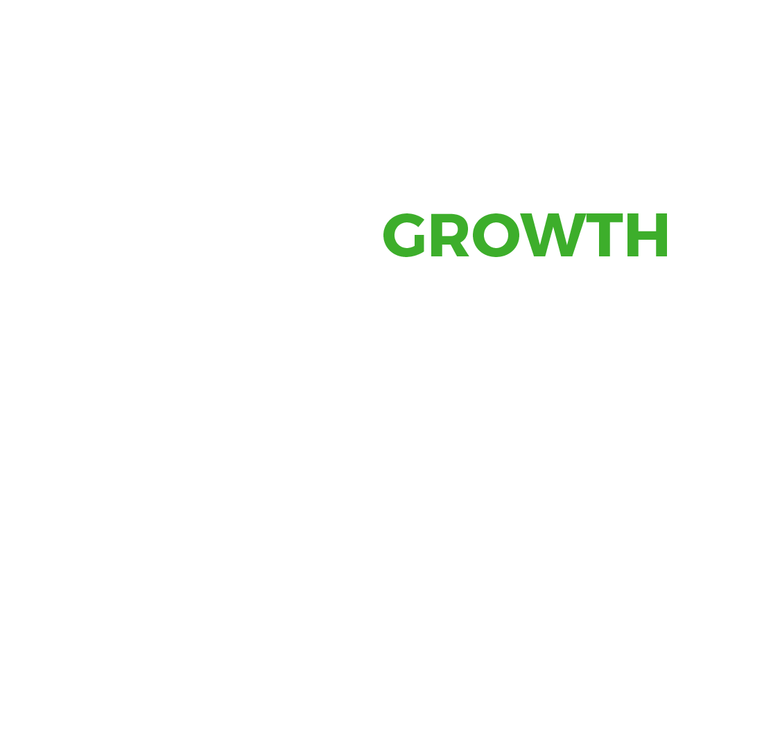 Norrep Income Growth Class
